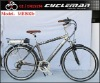 mountain electric bicycle with36V/10Ah and 2 year warranty,EN15194 certificate