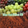 Grape Seed P. E, extract procyanidin,opc