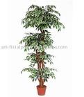 Flower-side Banyan Tree