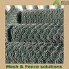 Cheap Hexagonal wire mesh (factory)