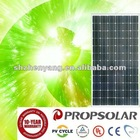 High Quality With Good Price Per Watt Solar PV Panels Mono 195W