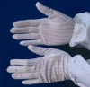 Cleanroom & ESD Gloves