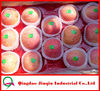 JQ Shandong Wholesale Prices Apple Fruit Fuji Apple