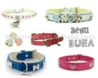 Pet Collar and Charm
