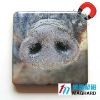 animal protection snout Magnetic Epoxy Gift sales promotion products fridge magnet