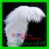 BEST Selected Prime Quality 22-24inch(55-60cm) Wholesale White ostrich feather centerpiece