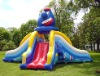 Animal Model Inflatable Slide
