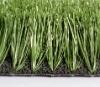 football grass (M60-3)