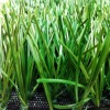 MIE Artificial Grass for Soccer Field