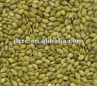 Shine skin pumpkin seed kernels(new crop)