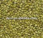 Shine skin pumpkin seed kernels(new crop)