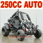 Automatic 250cc Beach Buggy Cart