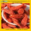 lycium fruit/Fructus Lycii