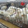 3 or 4 Layer Stainless Steel Chicken Cage