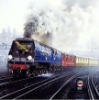 container railway transport from China to grodkovo russia