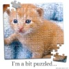 cardboard puzzles