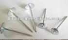 Q195 Steel Nails
