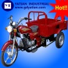 150cc Three Wheel Motorcycle