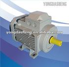 YDS2A high efficiency motor