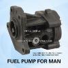 Ben Fuel Pump