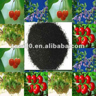 Natural Fertilizer Seaweed Extract powder