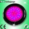 UFO 90w led grow light red 630nm blue 460nm