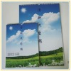 cheap 2013 wholesale wall calendar printing