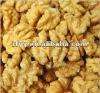 Most famous WangCang Brand Walnut in shell