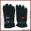 Popular winter glove