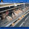 PVC coated / Galvanized poultry chichen cage