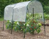 pvc cover tomato green house
