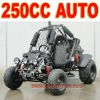 Automatic 250cc Beach Cart