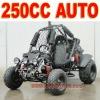 Automatic 250cc Beach Cart