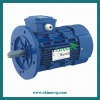 3-phase asynchronous motors-AC motor Y2 -1