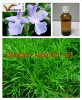Food Products Rosemary Oil
