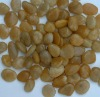 Natural Yellow Landscaping Pebbles