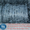 Hot Dipped Galvanized Barbed Wire (factory)