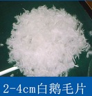 Washable high quality Good heat preservation 2-4cm white feathers