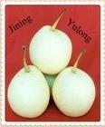 fresh Ya pears