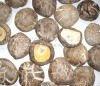 Dried mushroom whole