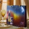 2011 Beautiful Fashion Professional shopping paper bag