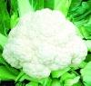 dried cauliflowers- open air vegetables