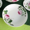 hot sale good looking Decal porcelain ceramic dinnerware plates
