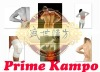 Prime kampo back pain relief plaster patch
