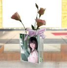 clear acrylic rectangular vase/aquarium with picture frame