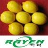 Delicious Fresh Lemon