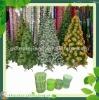 pvc pine needles