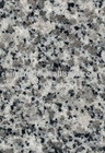 Oriental White Natural Granite