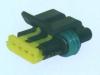 Auto plug Connector DJ7032Y-1.2-21