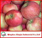 JQ China Fresh Fruit Market Prices Red Fuji Apple 10KG/Carton